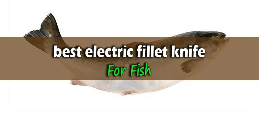 Best-Electric-Fillet-Knife